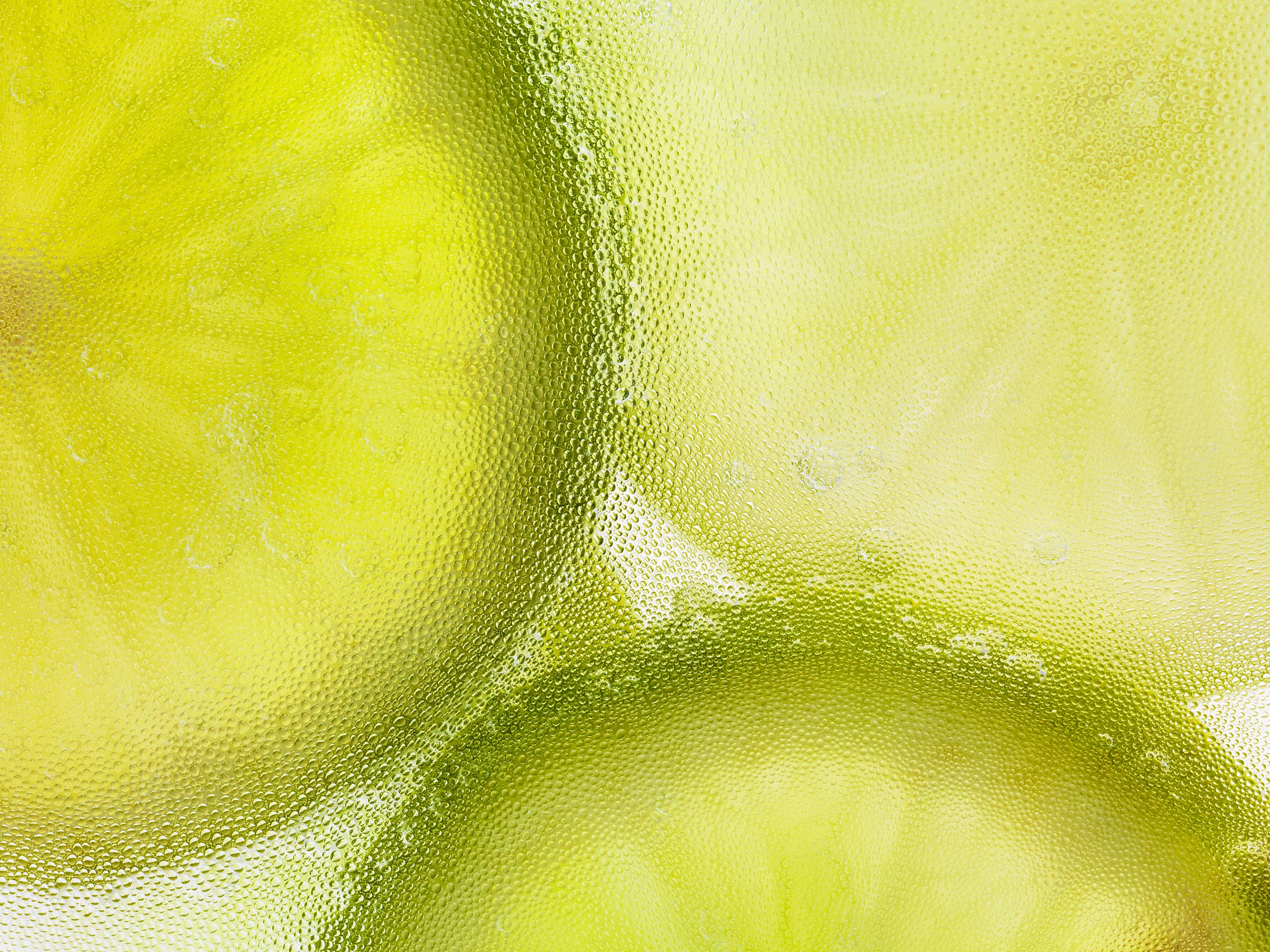 Nick_Rees-Citrus_Wheel_LIME